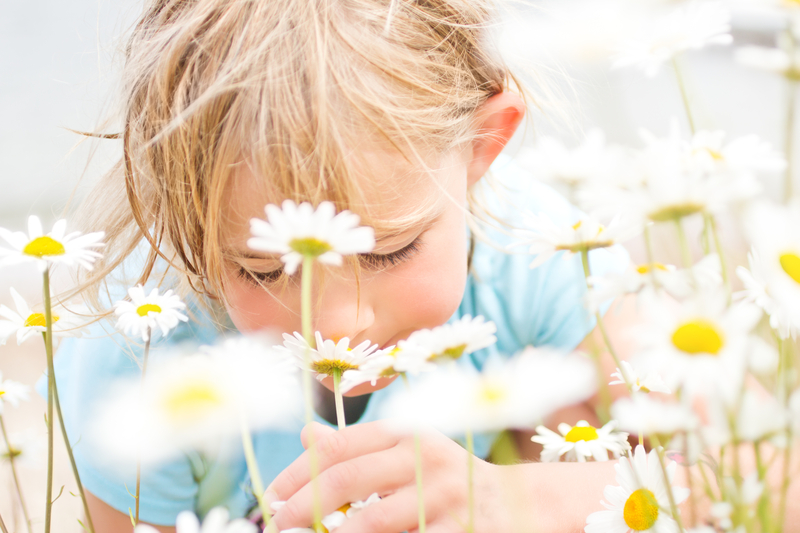 Girl smelling flowers dreamstime_s_43659578